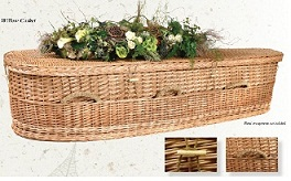 Casket: Willow Nature Casket