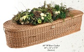 Casket: Willow Infant Nature Casket